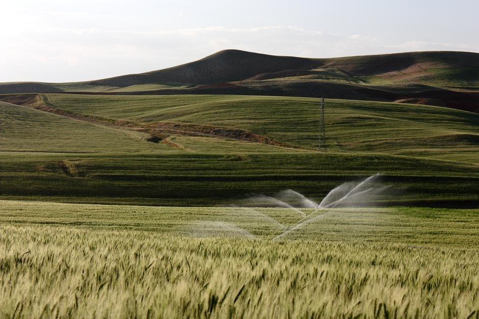 اجرای شبکه آبیاری تحت فشار داخل مزارع و ایستگاههای پمپاژ و نیرو رسانی (طرح شبکه آبیاری و زهکشی سد سهند- واحد عمرانی یک)