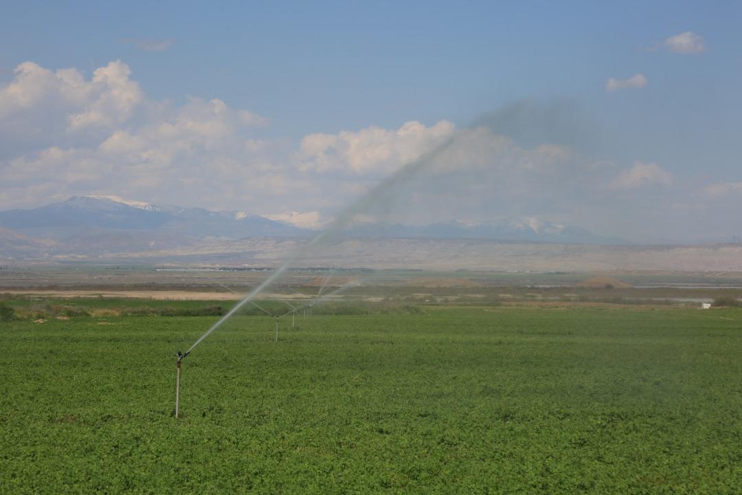 احداث مزارع بارانی واحد E2 شبکه فرعی آبیاری و زهکشی عین خوش
